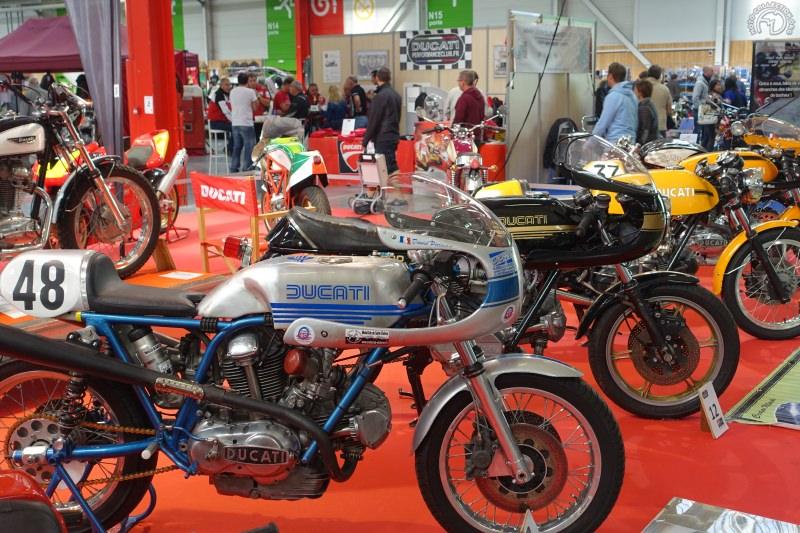 6-Ducatis-2
