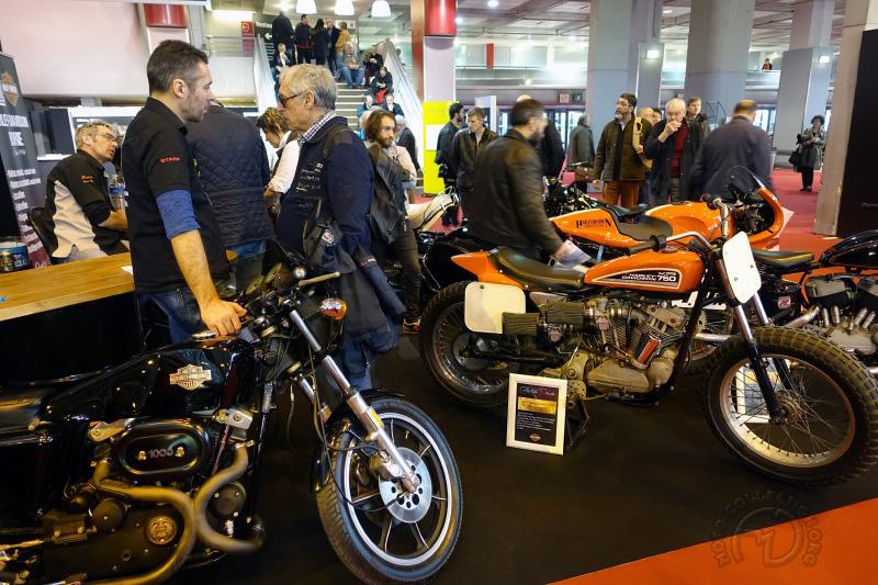 Harley Davidson XLCR-XR Borie-19