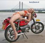 L'une des multiples poses de Tara sur le site born2brom.nl