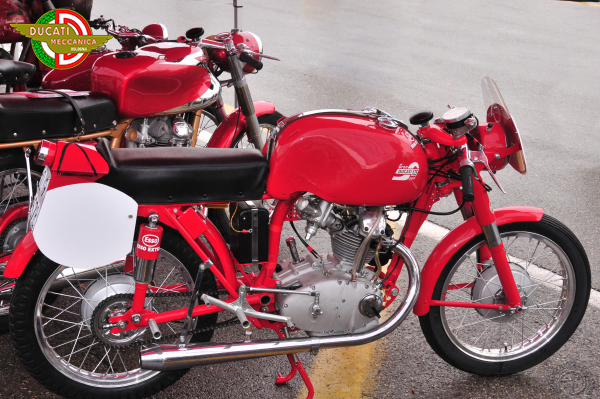 Collection Moto Ducati 125 1955-1956