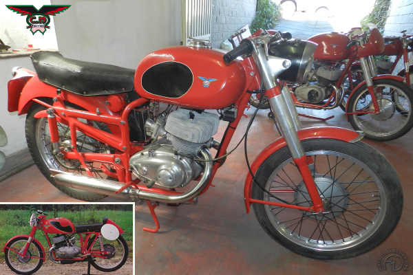 Collection Moto CM 250 1951-1953
